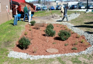 Finished rain garden in NorwichPhoto: Kierran Broatch