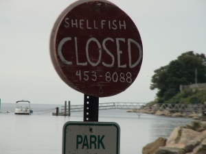 Shellfishing Closed Sign