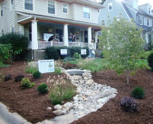 A rain garden at Secretary of the State Denise Merrill's house in Hartford