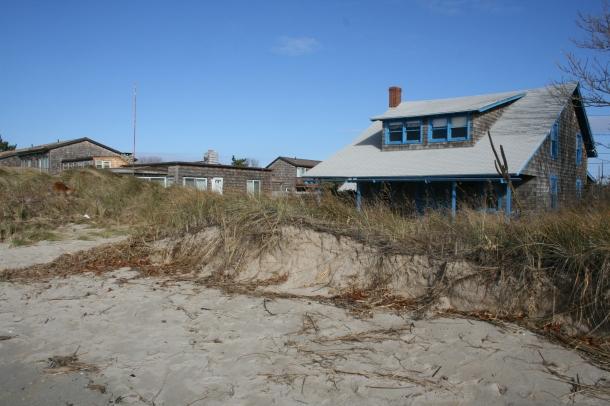 Protective Chalker Beach Dunes