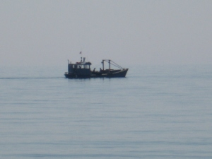 Shellfishermen working the waters off Westport