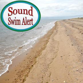 Sound Swim Alert, Sunday July19
