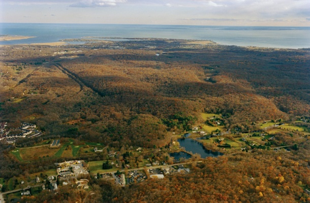 The Preserve, a coastal forest and wetlands complex in Old Saybrook, Westbrook, and Essex, CT. (Credit: Bob Lorenz)