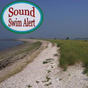 Sound Swim Alert for Westchester: The Beaches are Open!