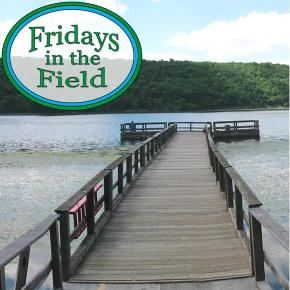 Fridays in the Field #1: Interview with John Hudak of the South Central CT Regional WaterAuthority