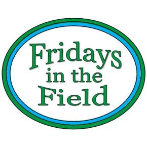 "Introducing our new series ""Fridays in the Field"""