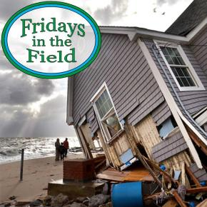 Fridays in the Field #10: The Nature Conservancy's Adam Whelchel, Part 2