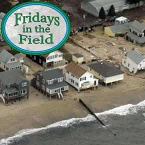 Fridays in the Field #10: The Nature Conservancy's Adam Whelchel, Part1