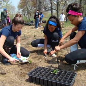 The Pequonnock Plant-a-thon: 2100 plants, 70 volunteers, 1 cleanriver.