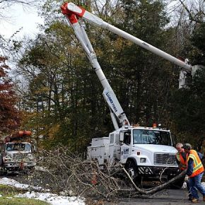 Final Decision by PURA on Tree-Trimming Passes theBuck
