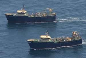 Paired midwater trawlers in New England waters.