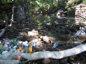 This Gunderboom full of trash, placed in the Hutchinson to contain a cooking oil spill earlier this summer, is downstream of the active sewage overflow at Beechwood and Farrell Avenues in Mount Vernon
