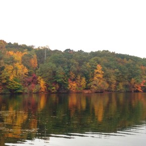 """Announcing our """"Fall Foliage"""" PhotoContest!"""