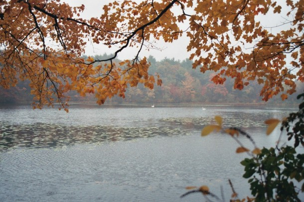 Lake Whitney, Hamden CT