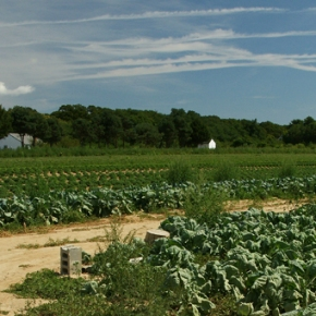 Farming to Improve Water Quality