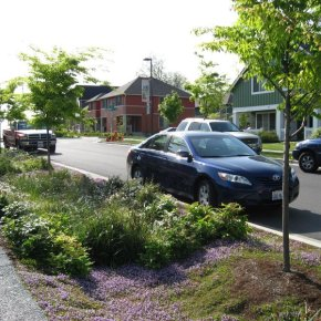 We're building a bioswale! So what isthat?
