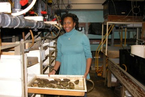 Exploring Oysters' Immune System: Dr. April Croxton