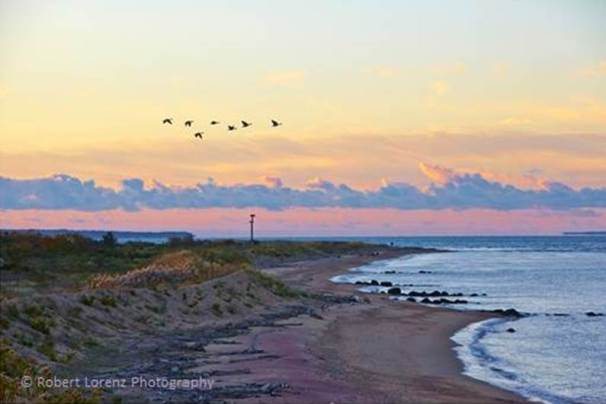 Plum Island. Photo by Robert Lorenz.