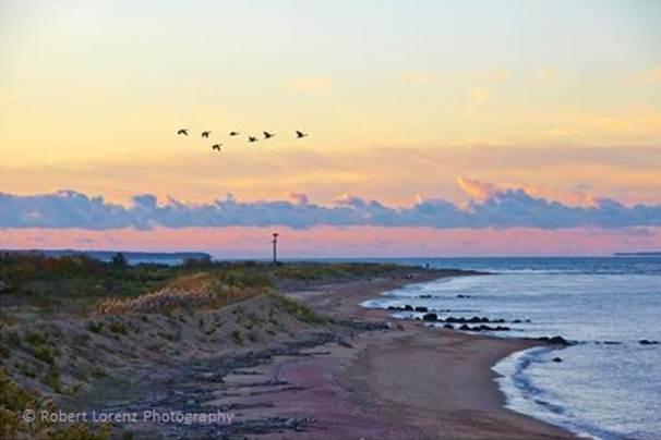 Plum Island. Photo by Robert Lorenz.