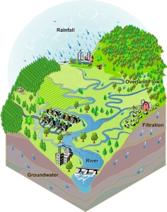 What is a watershed? Image via the Prairie Rivers Network.