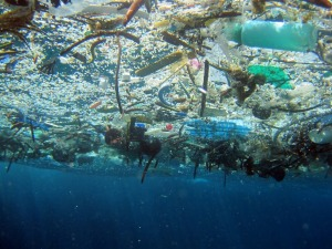 Marine-debris-via-www-dot-greenfudge-dot-org1
