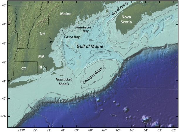 Georges Bank is one of the world's best fishing grounds. We need habitat protections to keep it that way. Photo: Jack Cook, Woods Hole Oceanographic Institution.