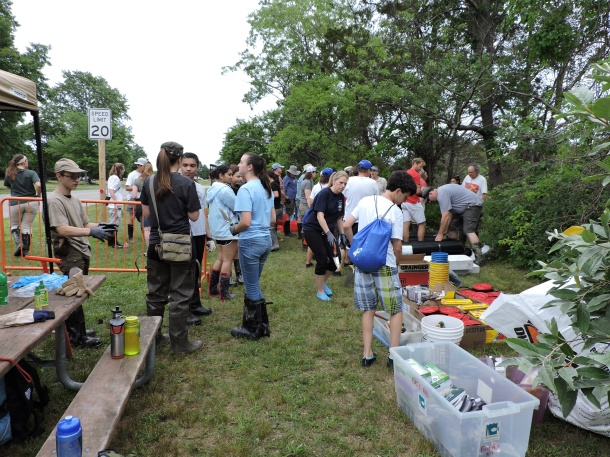 Volunteers from Long Island and beyond joined Save the Sound and our partners to participate in a planting that marks the beginning of the restoration of a healthy salt marsh at Sunken Meadow State Park.