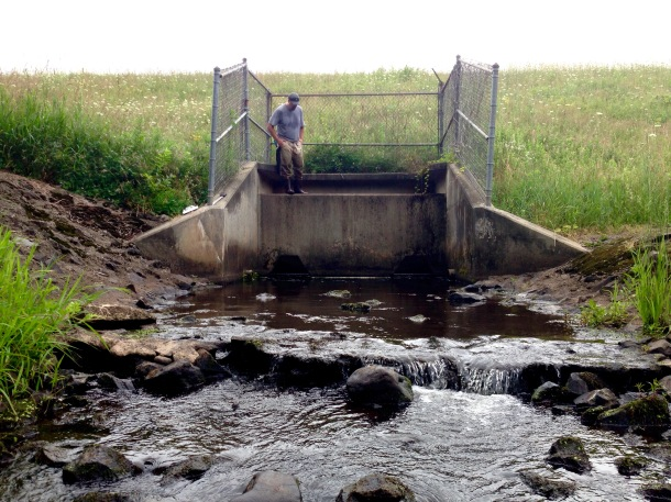 This culvert and earthen dam could be a fish barrier.