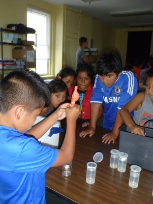 Students use a pipette to dilute samples