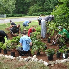 Hands in the ground: help us build a raingarden