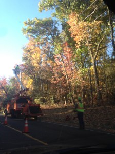 Tree cutting happening in Unionville, Connecticut. Photo from Leah Schmalz.