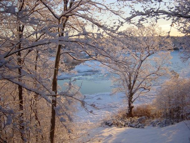 Stony Creek Estuary at Dawn by Linda Zonana (lhzonana@yahoo.com)