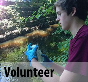 Volunteer to test water quality