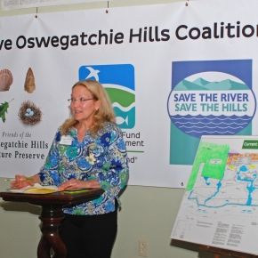 Art (and you!) can Save OswegatchieHills