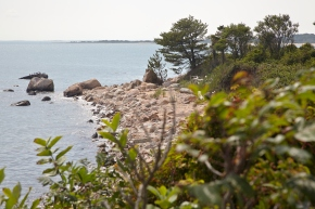 Plum Island: CFE/Save the Sound et al file suit against Homeland Security & GSA
