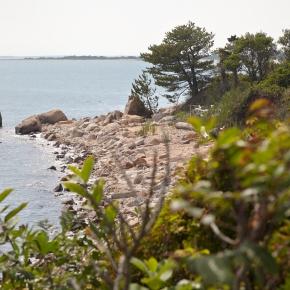 Plum Island: CFE/Save the Sound et al file suit against Homeland Security &GSA