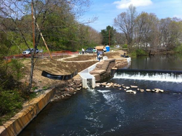 Wallace Dam fishway