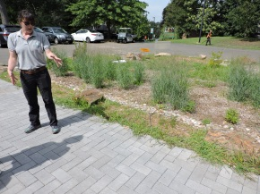 Launching phase two of the Beardsley Zoo green infrastructure project