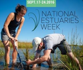 National Estuaries Week Events2016