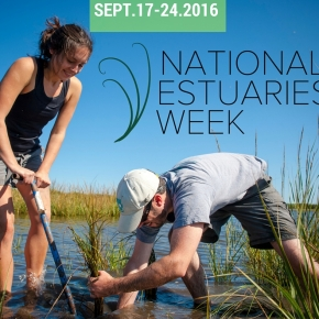 National Estuaries Week Events 2016