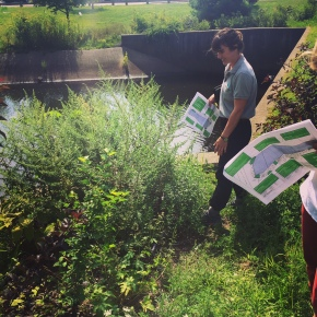 Tigers and Rivers and Rain Gardens, Oh My! Green Infrastructure on the Pequonnock River
