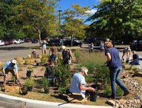 Press Release: Volunteers build green infrastructure skills at Beardsley Zoo planting
