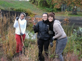 Volunteers plant new shrubs and grasses at the Pequonnock River planting in October 2016.
