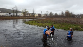 Fridays in the Field: Surveying Pond Lily with students from Quinnipiac University