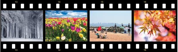 FilmstripofSeasons